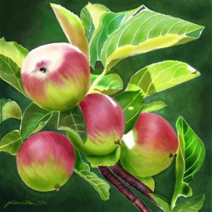 Fresh Sweet Fruit