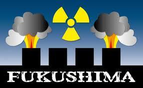 SCIENCE_FUKUSHIMA3