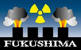 SCIENCE_FUKUSHIMA3
