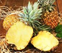 FOODS_PINEAPPLE