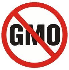FOODS_GMO-NO2