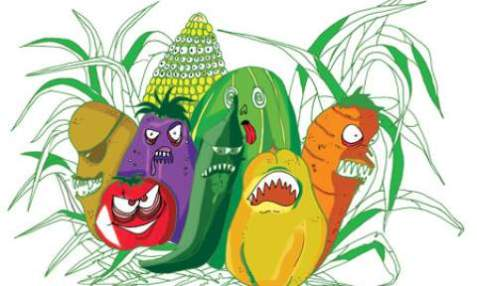 ENVIRONS_GMO_MADNESS