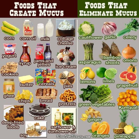 FOODS_MUCUS-NO2