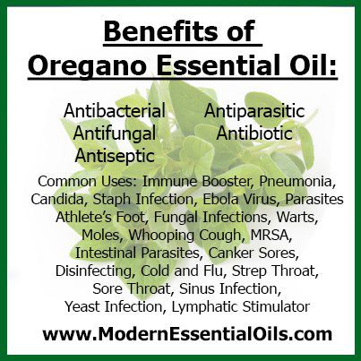 FOODS_OREGANO