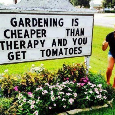 GARDEN_THERAPY2