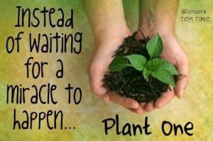 GARDENING_PLANT-GREEN