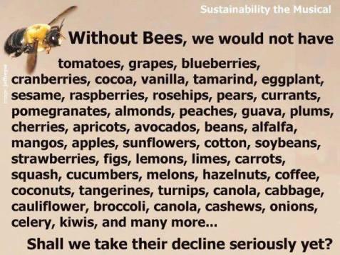 ENVIRONS_NO-BEES