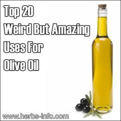 FOODS_OLIVE_OIL4