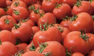 FOODS_TOMATOES3