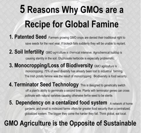 FOOD_GMOS