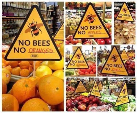 FOODS_BEES-DO